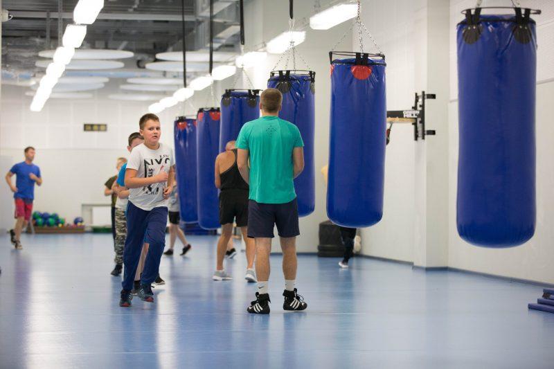 бокс чижовка арена занятия